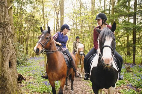riding horseback horses equipment safety protective wearing while fill