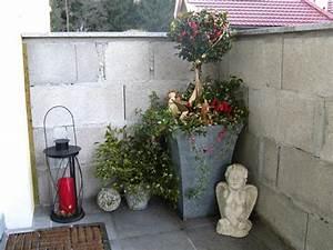 Blumenkübel Bepflanzen Sommer : k belbepflanzung f r hauseingang trocken und schattig mein sch ner garten forum ~ Eleganceandgraceweddings.com Haus und Dekorationen
