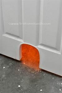 DIY Cat Potty Door First Home Love Life