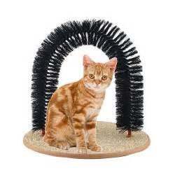 best toys for cats home alone interactive cat toys