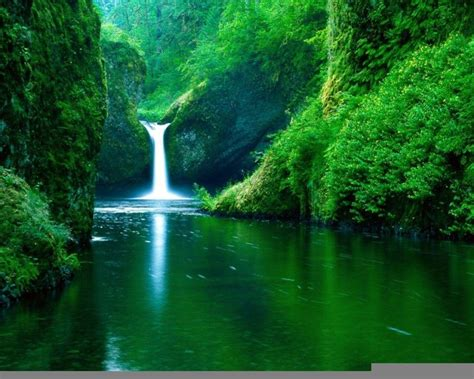 Free Nature Backgrounds by Free Nature Backgrounds Pictures Wallpaper Cave