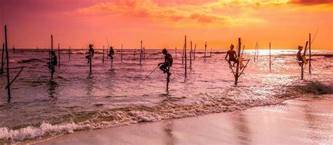 sri lanka beaches wildlife beach tours  enchanting