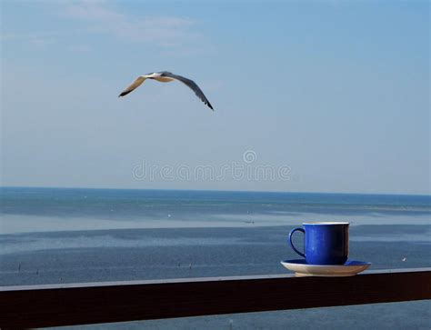 Pastries are all vegan by brightside kitchen. Coffee Cup With Horizon Line Over The Sea And A Seagull In ...