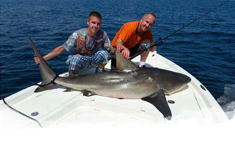 shark fishing canaveral cape charters charter deep sea florida beach cocoa into caught