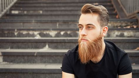 mens beards   color