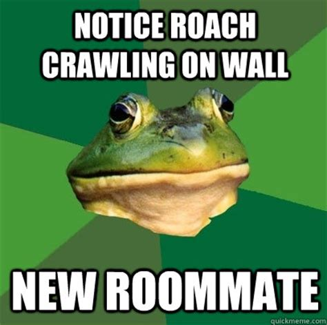 Roach Meme - notice roach crawling on wall new roommate foul bachelor frog quickmeme