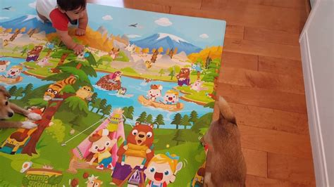 baby care play mat 2016 7 baby care play mat review