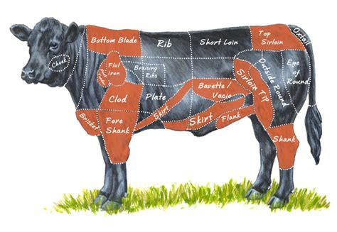what is flank steak difference between flank steak and skirt steak erinnudi com
