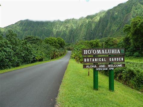 botanical gardens oahu hiking hoomaluhia botanical gardens in oahu hawaii
