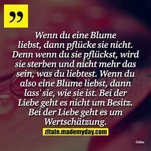 Liebe Ist Wie Eine Blume : wenn du eine blume liebst made my day ~ Whattoseeinmadrid.com Haus und Dekorationen