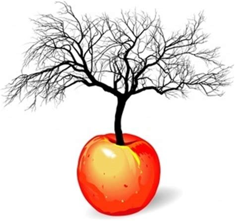 realistic apple tree drawing realistic apple tree drawing clipart panda free