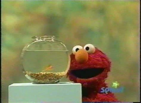 elmo letter of the day song elmo letter of the day song levelings