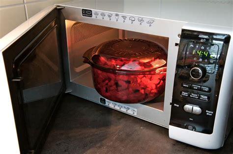 cuisiner au micro ondes pour chien baikasblog