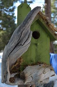 Unique Bird Houses - WoodWorking Projects & Plans