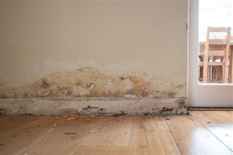 moisissure tapisserie chambre problme humidit maison affordable traiter les murs