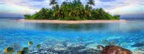mobile, island, sea, life, on, fish, underwater, in the, a