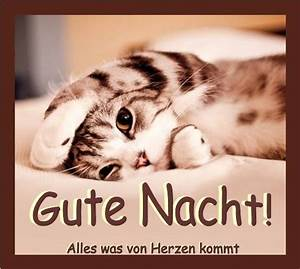 Lustige Gute Nacht Sprüche Bilder : gute nacht bild 25892 gbpicsonline ~ Frokenaadalensverden.com Haus und Dekorationen