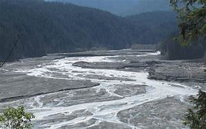 Freeing The Elwha  Sediment Deposition And River
