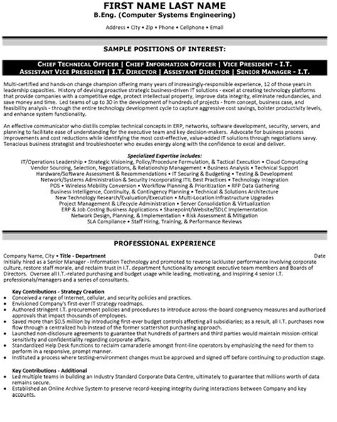 resume exles information technology manager