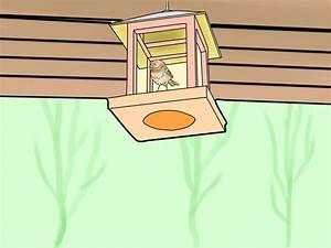 Katzen Garten Vertreiben : 4 best ways to keep cats out of a garden wikihow ~ Michelbontemps.com Haus und Dekorationen