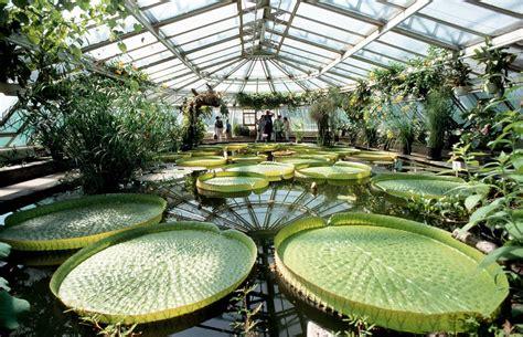 Berlin Der Botanische Garten Droht Finanziell