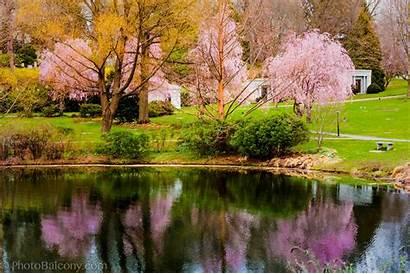 Spring Season Welcome Desktop Wallpapers Definition Funny