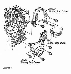 2004 Honda Civic Serpentine Belt Routing And Timing Belt Diagrams