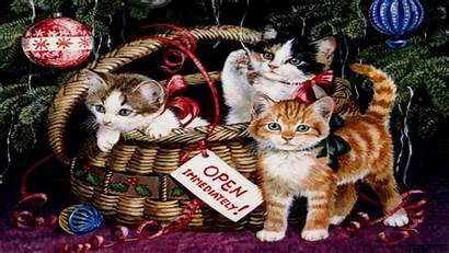 Christmas Desktop Wallpapers Computer Downloads Cat Xmas
