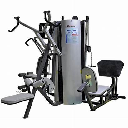 Gym Cost Equipment Machine Station Setup Complete
