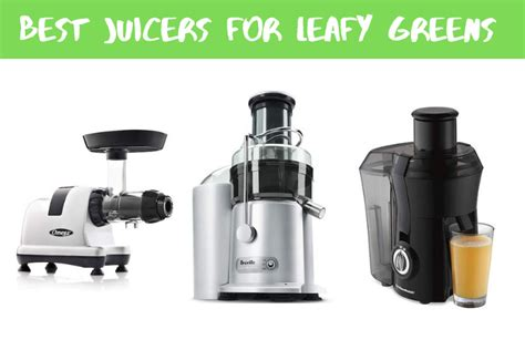 juicers leafy greens beginners edition boost someone take want health don looking