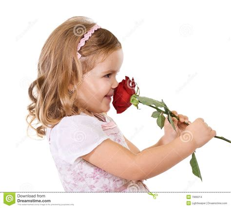 smelly roses happy little girl smelling a rose stock photo image 7966014