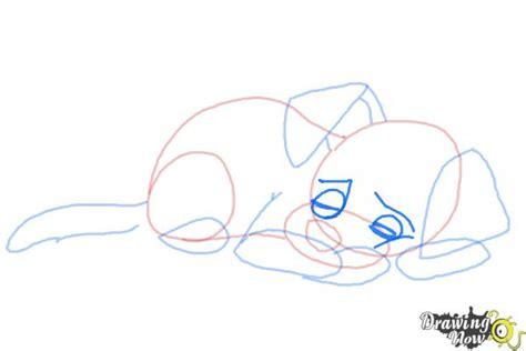 draw  sleeping dog drawingnow
