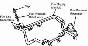 95 F150 Fuel Line  95  Free Engine Image For User Manual