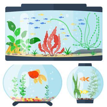 wassermenge aquarium berechnen grundlagen kostenloser