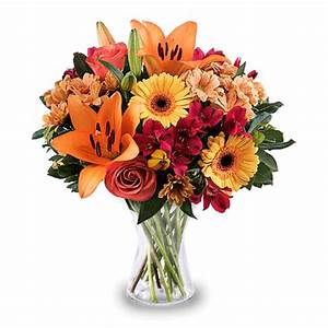 Livraison Fleurs à Domicile : livraison de fleurs domicile en france et l ~ Dailycaller-alerts.com Idées de Décoration