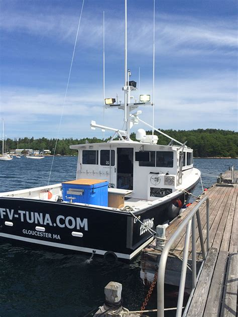 Fv Tuna Boat by Fishing Pictures From The Tuna