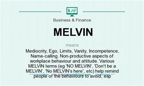 What Does Vanity Means by What Does Melvin Definition Of Melvin Melvin