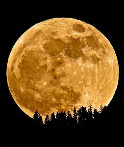Next Week U2019s Supermoon May Be A Once In A Lifetime Event