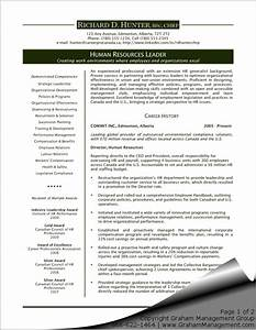 executive resume template cyberuse With it executive resume template