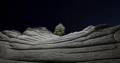 4k Wallpapers Ios Tree Macos Night Desert