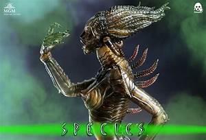 Species  U2013 Sil  U2013 Threezero Store