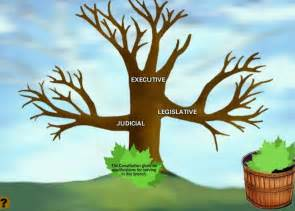 Three Branches of Government and What They Do