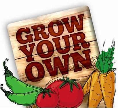Garden Vegetable Clipart Kitchen Transparent Gardening Cartoon