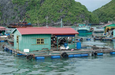 Phoebettmh Travel (vietnam)  Enjoy Full Memories In