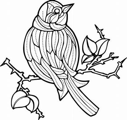 Burung Pola Gambar Clipart Vektor Bird Hewan