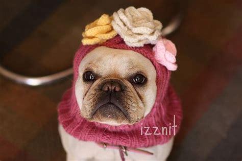 lilys balaclava knit bits knitting patterns uk baby