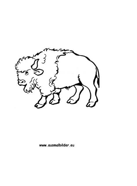 ausmalbild bison kostenlos ausdrucken
