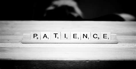 patience  important  quality seo