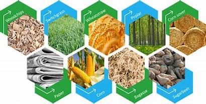 Raw Material Sekab Ethanol Ravara Renewable Cellulose