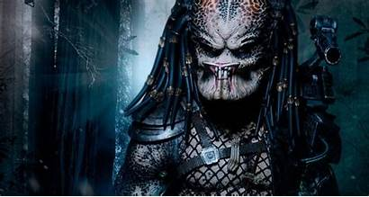 Predator Alien Order Jungle Depredador Hunter Vs